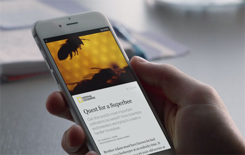 Facebook Instant Articles vue